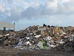 waste wood, tyndall manchester